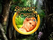 Видео-слот Secret Forest